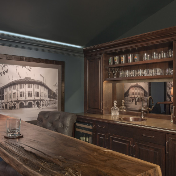Traditional Classic Man Cave Entertainment Room